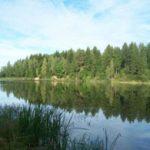 Dubysos regioninio parko nuotr.